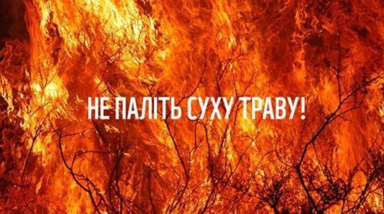 Спалювання сухого листя та трави є правопорушенням