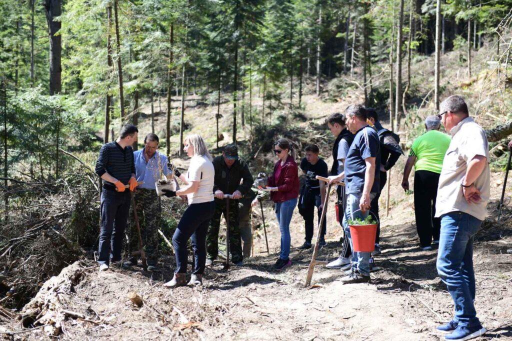 Стрілківська ТГ долучилась до Акції «Створюємо ліси разом»